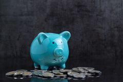 Money savings with blue piggy bank on dark black table with coin Stock Images