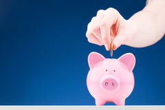 Money Savings - Coin and Piggy Bank Royalty Free Stock Image