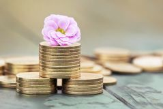 Money savings - coins in spring Royalty Free Stock Photos