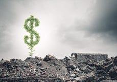Money savings Stock Photography