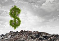 Money savings Royalty Free Stock Photos