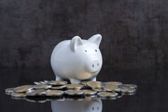 Money savings with white piggy bank on dark black reflective tab Royalty Free Stock Images
