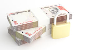 Money and security. Royalty Free Stock Photography