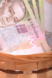 Money set in a basket, ukrainian money Royalty Free Stock Images