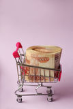 Money for shopping. A bundle of money in a cart Royalty Free Stock Images