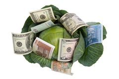 Money situated on green cabbage on white Royalty Free Stock Photography