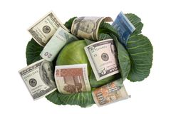Money Situated On Green Cabbage On White Royalty Free Stock Image
