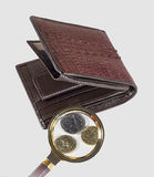 Money. Small money appear larger through a magnifying glass Royalty Free Stock Photos