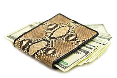 Money in snake leather purse Stock Photo