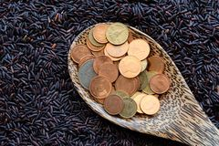 Money on spoon and purple rice Royalty Free Stock Photo