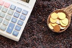 Money on spoon and purple rice Stock Photo