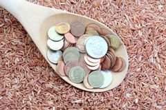 Money on spoon and red rice Royalty Free Stock Images