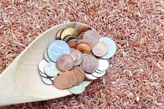 Money on spoon and red rice Royalty Free Stock Photos
