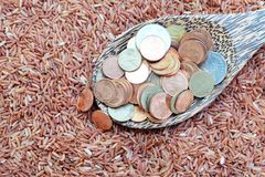 Money on spoon and red rice Royalty Free Stock Photography