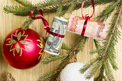 Money on spruce branch Stock Photography