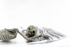 Money Thailand skeleton model on white background.  Royalty Free Stock Images