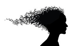 Money theme. Girl silhouette with money symbols as the hair Royalty Free Stock Image