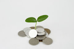 Money to grow. For your assets Royalty Free Stock Images