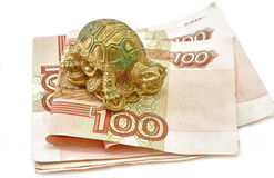 Money and Tortoise Rich Royalty Free Stock Images