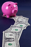 Money trail leading to piggy bank Stock Images