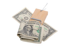 Money Trap. Photograph of a Mouse trap which has caught us dollar notes, shot in studio and cut out,isolated on white Royalty Free Stock Image