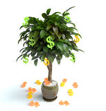 Money Tree. For a bckground picture vector illustration