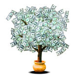 Money tree. A tree with money leaves growing from a golden pot