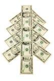 Money tree royalty free stock photo