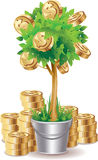 Money tree. Gold dollars coins growing on money tree. Illustration isolated on white background Royalty Free Stock Photography