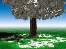 Money Tree. With hundred dollar bills growing on it and lying on green grass under it. Investment concept Royalty Free Stock Photo