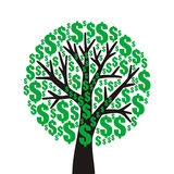 Money tree Stock Photography