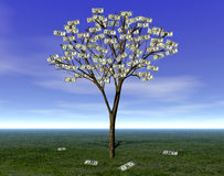 MONEY TREE WEALTH