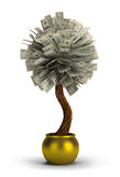 Money tree. In a golden pot. 3d image. White background Royalty Free Stock Photo