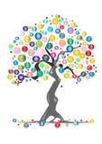 Money tree. Cartoon tree on white background Stock Photography