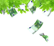 Money tree. Isolated over white Royalty Free Stock Photo