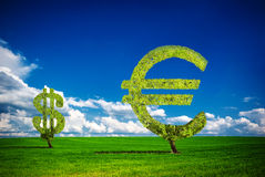 Money tree. Painted tree in the form of euro & dollar Royalty Free Stock Photography