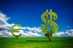 Money tree. Painted tree in the form of euro & dollar Stock Image