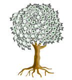 Money tree. Vector art of a Money tree on white background Royalty Free Stock Photography