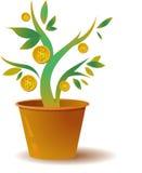 Money tree. Logo / icon of money tree Stock Photos