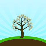 Money Tree. Who said money doesn't grow on trees. Fully scalable vector illustration Stock Images