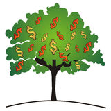 Money tree. With dollars - vector Stock Image