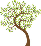 Money Tree stock illustration