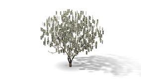 Money Tree Animation Royalty Free Stock Image