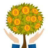 Money tree with bitcoins growing on human hand. Vector illustration royalty free illustration