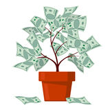 Money tree, business banking, abundance vector concept Royalty Free Stock Photography