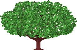 Money tree Royalty Free Stock Photos