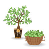 Money tree with a coin root. Green cash banknotes tree in ceramic pot and money basket. Business and investment harvest Royalty Free Stock Image