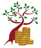 Money tree and coins design  over a white backgrou Royalty Free Stock Photos