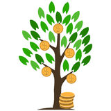 Money tree with coins. Stock Images