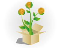 Money tree. Come from the box Stock Images